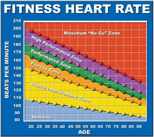 Heart Rate Guide